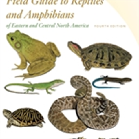 Amphibians and Reptiles-Eastern