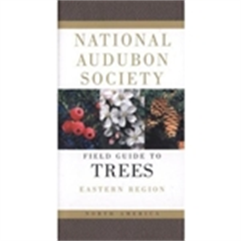 Audubon Trees-Eastern